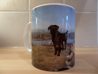 Picture of Black Labrador at Ghyll Head mug