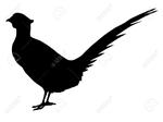 Picture of Black Labrador silhouette Apron
