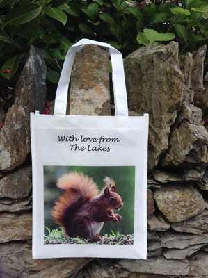 Picture of Red Squirrel shopping bag