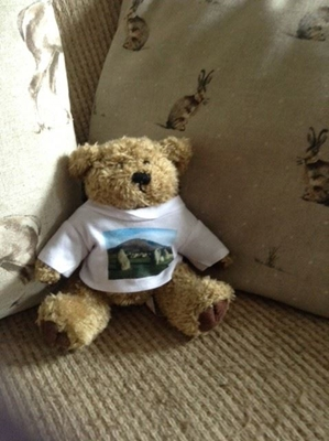 Picture of Lake District Teddy Bear