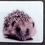 Picture of Hedgehog cork backed place mat